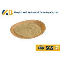 Wholesale No Foreign Objects Organic Brown Rice Powder For Nutritional Supplements from china suppliers