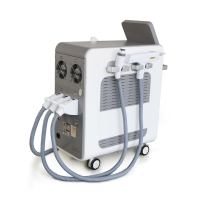 Wholesale Multifunction Facial Laser Therapy Machine With Bipolar RF Handle from china suppliers