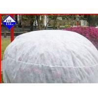 Wholesale Spunbond Winter Crop / Plant Protection Fabric , Non Woven Fabric Used In Agriculture from china suppliers