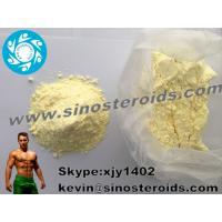 npp steroid profile