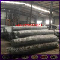 China 8x10 cm Ω Type  Ecologica Gabion Road Reinforced Wire Mesh in roll on sale
