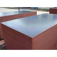 Poplar core wbp glue mm shuttering plywood china film