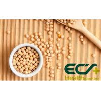 Wholesale 50% Nature Made Soy Lecithin Powder Cardio Health Supplements Easy Formulated from china suppliers