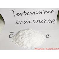 Buy cheap 99% Purity Testosterone Raw Powder Test Enan For Bodybuilding Legal Anabolic from wholesalers