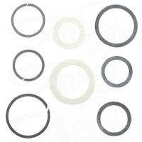 Constant Section Rings