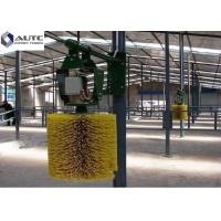 China Customized Color Rotating Cow Brush , Cattle Scratcher Brush Hard Plastic PP on sale