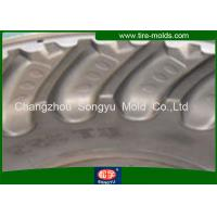 Quality Professional Personalized Agricultural Tyre Mould , Forging Steel Tire Mold for sale