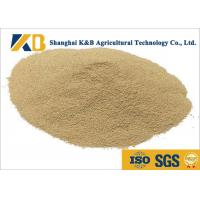 Wholesale Non - Allergen Natural Feed Additive / Chicken Feed Protein High Biological Value from china suppliers