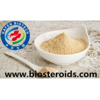 Wholesale Brownish Yellow Powder Sex Enhancement Drugs Peru Maca Extract Anti Premature Ejaculation from china suppliers