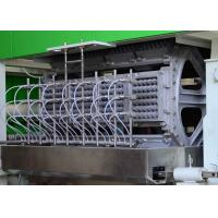 Wholesale Auto Recycling Paper Egg Tray Machine , Fruit tray / Egg Carton Pulp Moulded Machinery from china suppliers