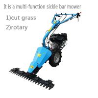 China Portable Grass Cutter Gasoline Hand Pull Lawn Mower for Garden on sale