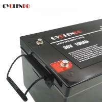 Wholesale IP65 Waterproof 36 Volt 100ah Deep Cycle Lithium Ion Battery from china suppliers