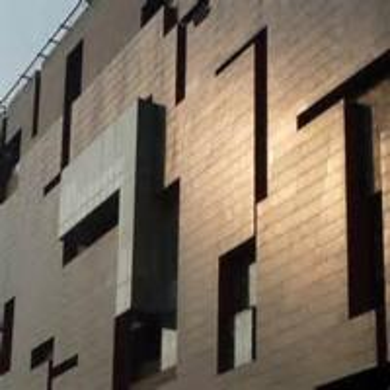 Wooden Surface Aluminium Wall Panels Exterior Metal Wall