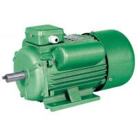 Single Phase Capacitor Induction Motor Images Single