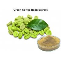 Wholesale Natural Plant Extract Powder 45% Chlorogenic Acid 100 Pure Green Coffee Bean Extract Caffeine Capsules from china suppliers