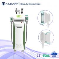 Wholesale Best effect 5 handles cryolipolysis body slimming beauty machine for clinic in advance from china suppliers