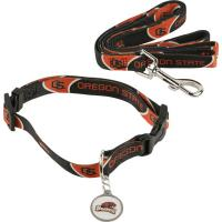 Personalized Dog Collar Popular Personalized Dog Collar