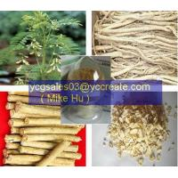 Wholesale Astragalus P.E. from china suppliers