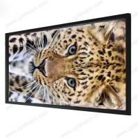 Wholesale Cynthia High Quality Fixed Frame Projection Screen Flat Surface from china suppliers