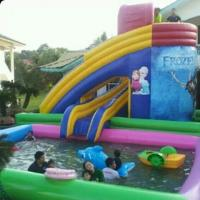 Wholesale used inflatable water slide for sale from china suppliers