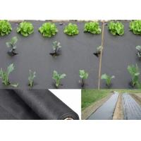 Wholesale Moisture PP Agriculture Non Woven Fabric For Garden Weed Control 50gsm - 70gsm from china suppliers