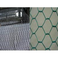 China Heavy hexagonal chicken wire mesh,pvc coated hexagonal wire mesh,Plastic Coated Hexagonal Wire Netting for sale on sale