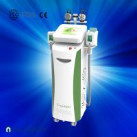 Wholesale Fat dissolving cryolipolysis machine / vacuum slimming beauty machine with Bottom Price from china suppliers