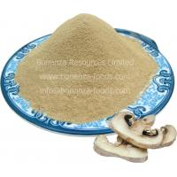 Freeze Dried Button Mushroom Powder/2016 NEW NATURAL FOOD/survival food/camping food