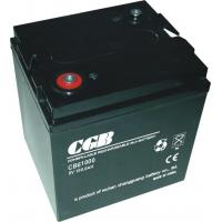 China 100AH 6 V Rechargeable Battery Free Maintenance With CE Standards on sale