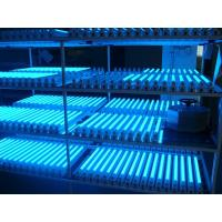 Wholesale 13Watt 3feet T5 LED Tube Light 1350lm CRI 80 High Efficiency For Hospital from china suppliers