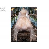 Wholesale Pink Short Fitted Wedding Dress Special Irregular Transparent Lace Long Tail from china suppliers