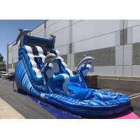 Wholesale Blue Dolphin Large Inflatable Water Slides , Faster Inflation Bouncy Castle Water Slide from china suppliers