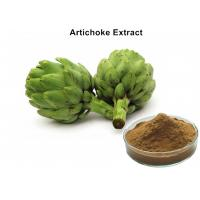 Wholesale Artichoke Leaf Extract Plant Extract Powder Cynarin And Chlorogenic Acid For Weight Loss from china suppliers