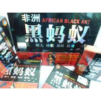 Buy cheap Black Ant Male Sexual Stimulant Sex Penic Enlargement Pills Cool / Dry Place from wholesalers