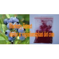 China Blueberry Extract( Anthocyanin)(Shirley at virginforestplant dot com) on sale
