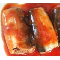 Wholesale new product sardine in can with tomato sauce, canned sardine from china suppliers