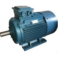 Gost Standard Y2 3 Phase 4 Pole Induction Motor Three