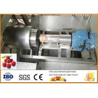 Wholesale SS304 Turnkey Waxberry Beverage Processing Line CFM-B-07-2000 from china suppliers