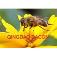 Wholesale Royal Jelly & Honey from china suppliers