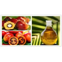 Wholesale Industrial Olive Oil  Palm oil Separation Decanting Centrifuge With Spiral Solid Discharge OEM from china suppliers
