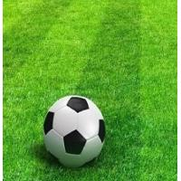 China low price top quality 50mm height 11000 Dtex green Football artificial turf/ Synthetic grass or lawn on sale