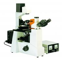Fluorescence Microscopy Biological Microscopes For Pharmacy / Disease Prevent