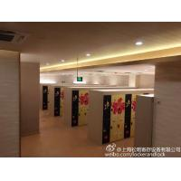 Wholesale SPA IOT Locker 6 Comparts  3 Column Double Tier Lockers With Print Picture Door from china suppliers