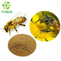 China Water Soluble Propolis 70% Flavones 10% Powder Honey Bee Propolis Extract on sale