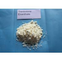 Wholesale Trenbolone Enanthate Powder / Tren E For Muscle Gaining CAS 10161-33-8 from china suppliers