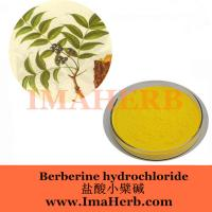 China 97% Berberine Hycholoride,Berberine,Berberine powder CAS Number: 633-65-8 on sale