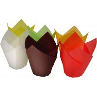 Wholesale solid color cake tulip cup from china suppliers