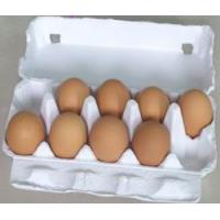 Wholesale egg carton / egg box  / egg tray from china suppliers