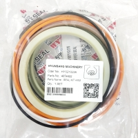 Wholesale Arm Cylinder Seal Kit 4654422 4654421 4369766 For Hitachi Excavator ZX200-3 ZX210LC-3 from china suppliers