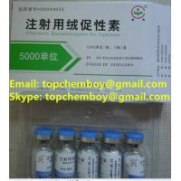 Wholesale 99% purity HCG 5000iu/vail bodybuilding fat-burning fat-cut fat lose CAS NO.9002-61-3 from china suppliers